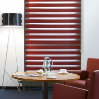 Allure Scarlet Day Night Roller Blind