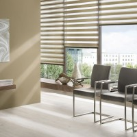 Beam Maple Day Night Roller Blind