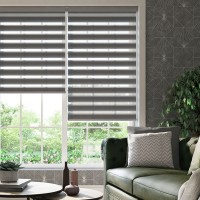 Demure Platinum Day Night Roller Blind